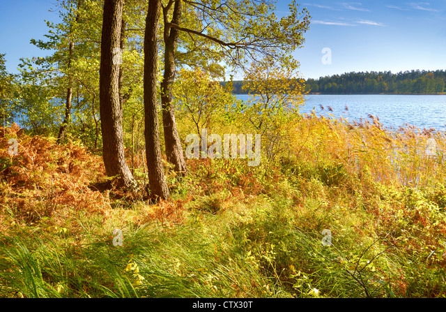 Suwalki Landscape Park, Poland, Europe - Stock Image