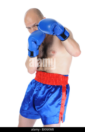 boxer - Stock Image
