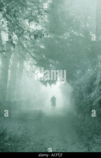 photo of a man walking down a path in the mist - Stock-Bilder