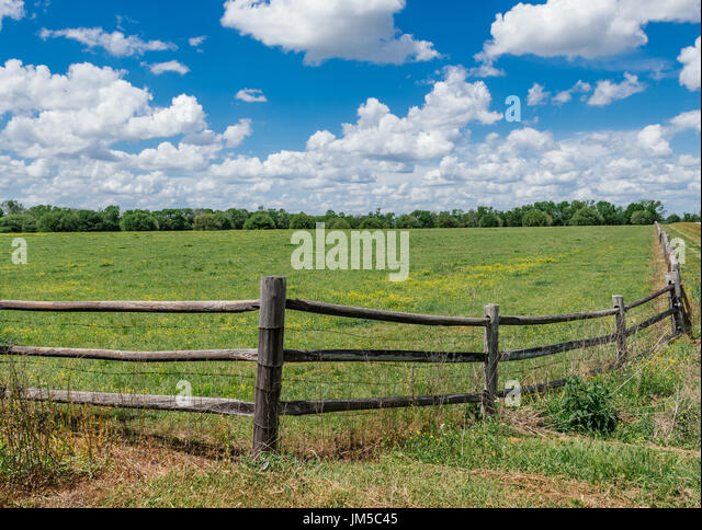 Green fenced in pasture land in central Alabama, during the summer growing season.  Split rail fencing is a common - Stock Image