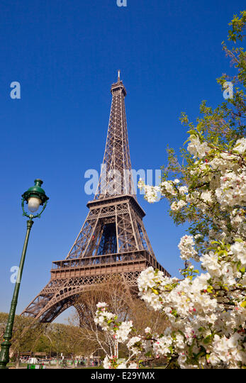 France, Paris, Champs de Mars and the Eiffel Tower in spring - Stock Image