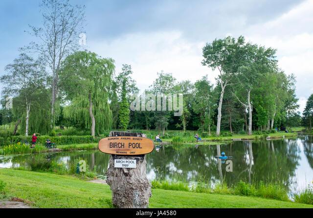Birch Pool home of Elworth Angling Society, Elworth, Sandbach,Cheshire,UK. - Stock Image