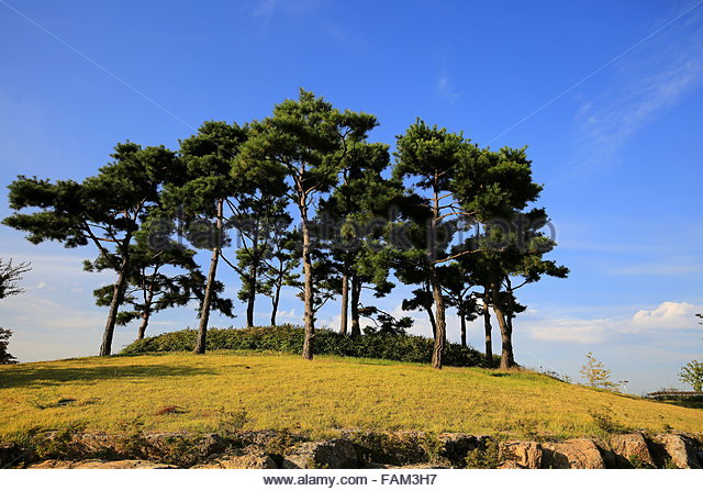 Jeju island chamber of secrets - 3 6
