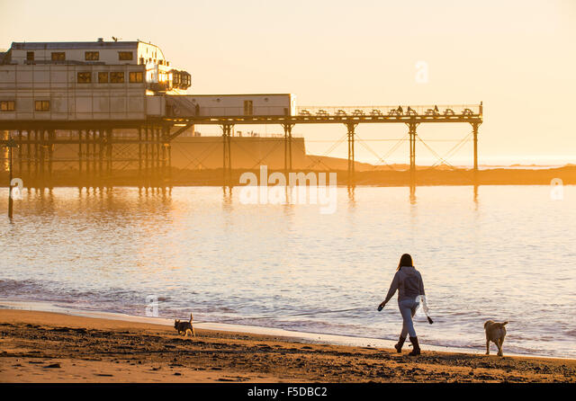 Aberystwyth, Wales, UK. 02 November, 2015.   A woman walking her dogs on the beach  enjoying another day of cloudless - Stock Image