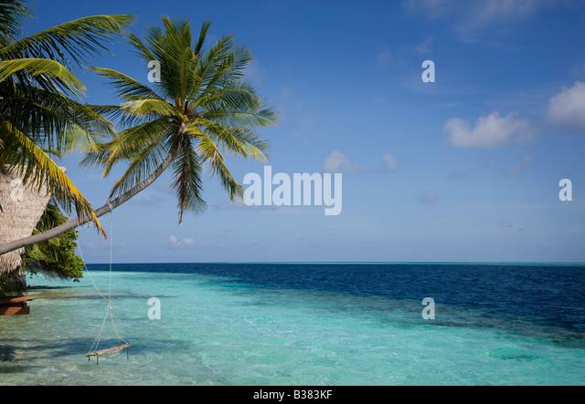 Rope swing on South Ari Atoll in Maldives near India - Stock-Bilder