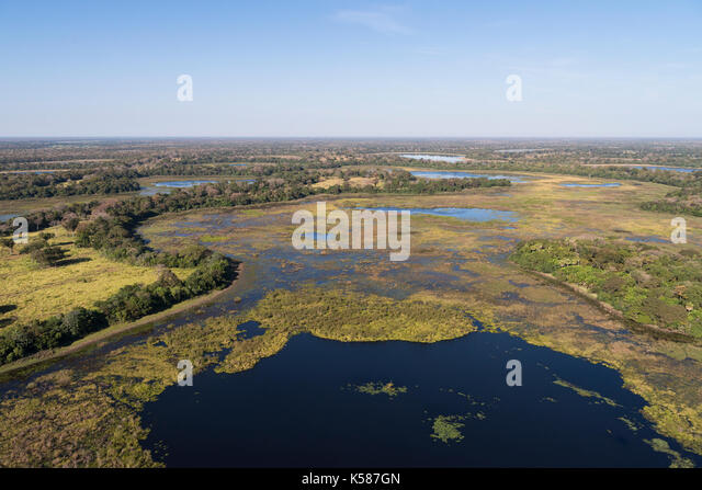 Lakes and wetlands at Nhecolandia region of South Pantanal, Brazil - Stock Image