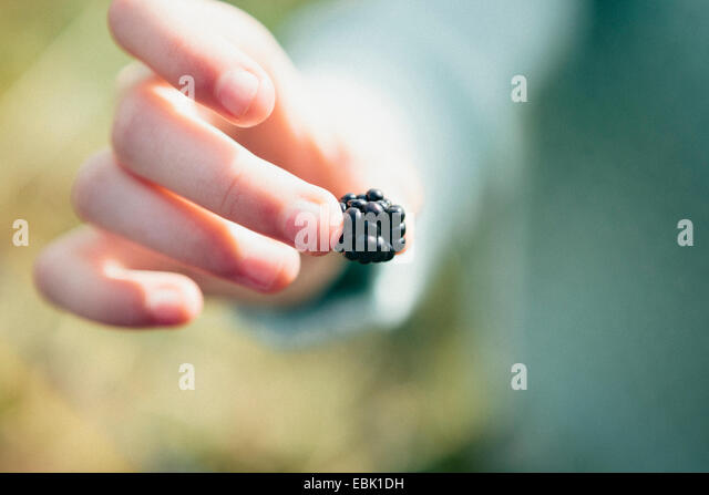 Person holding blackberry, close up - Stock Image