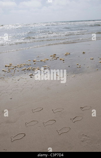 Germany, Schleswig Holstein, Amrum, Fish drawings on sandy beach - Stock-Bilder