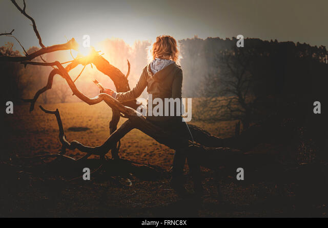 young woman siting on a fallen tree in sunset park - Stock Image