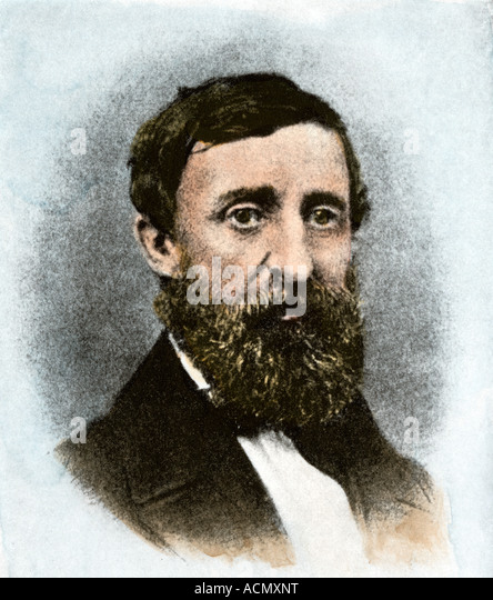 Henry David Thoreau at age 43 - Stock Image
