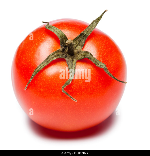 Tomato with part of vine attached - Stock Image