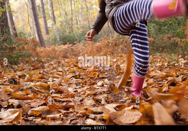 Child kicking leaves in woodland - Stock-Bilder