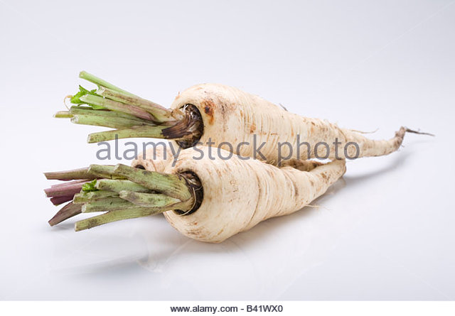 On a white background - Stock Image