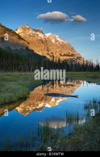 Mount Wilson at Graveyard Flats - Banff National Park - Alberta, Canada. - Stock Image