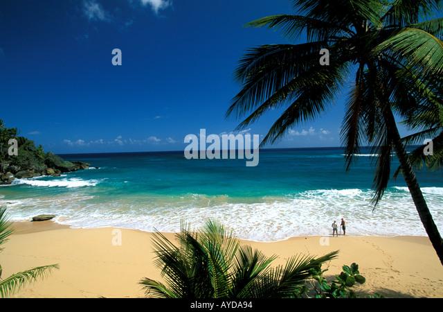 Dominican Republic beach Playa Grande - Stock Image