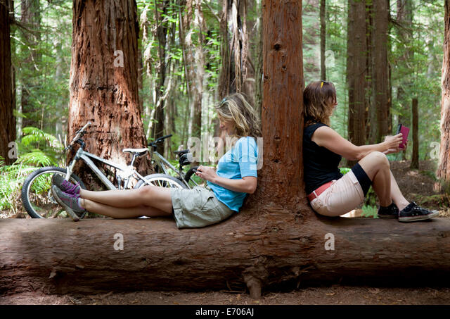 Two mid adult women looking down at smartphone and digital tablet in forest - Stock-Bilder