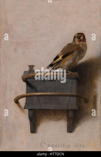 The Goldfinch, by Carel Fabritius, 1654, Royal Art Gallery, Mauritshuis Museum, The Hague, Netherlands, Europe - Stock Image