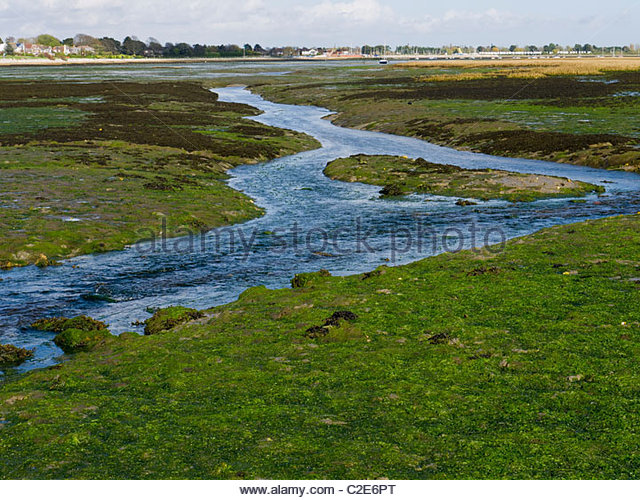 Stream running into Sea Tide out Emsworth Hampshire England - Stock Image