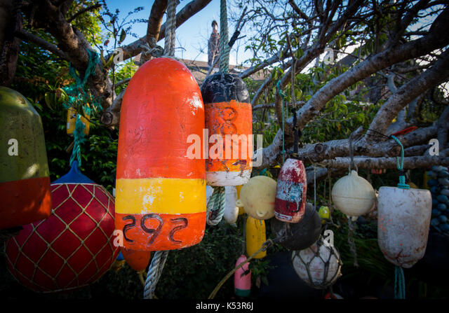 Orange Buoy Hangs Among Others in Tree in coastal town - Stock Image
