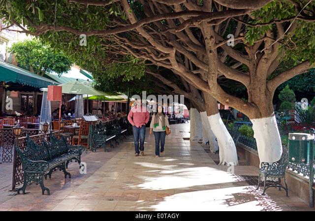 Jardin de la union stock photos jardin de la union stock for 7 jardines guanajuato