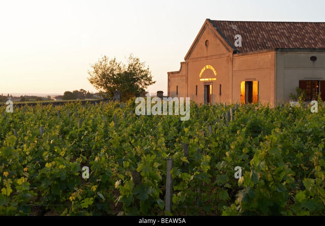 the winery at sunset chateau trottevieille saint emilion bordeaux france - Stock Image