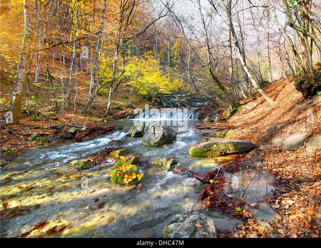 Beautiful fast river in mountain forest at sunrise - Stock-Bilder
