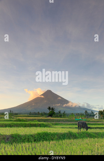 Philippines, Souteastern Luzon, Bicol, Mayon Volcano - Stock Image