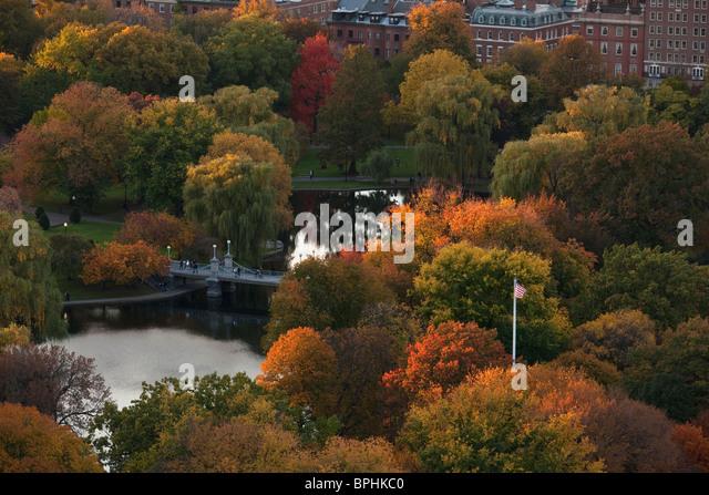 Autumn trees in a park, Boston Public Garden, Boston, Suffolk County, Massachusetts, USA - Stock Image