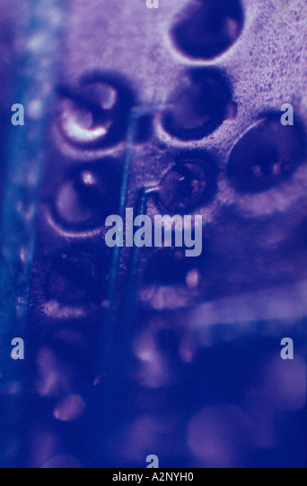 Close-up detail of a circuitboard - Stock-Bilder