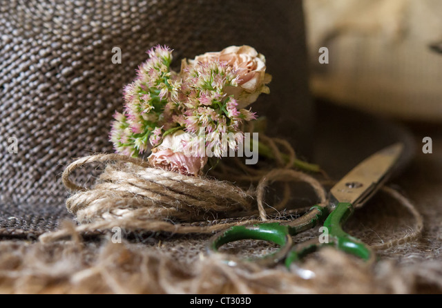 Still life of scissors,small bouquet with flowers and cord - Stock Image