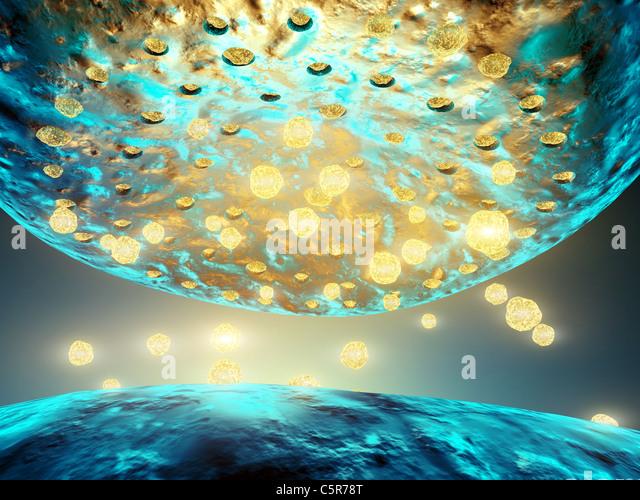 Synaptic transmission , 3d illustration - Stock Image