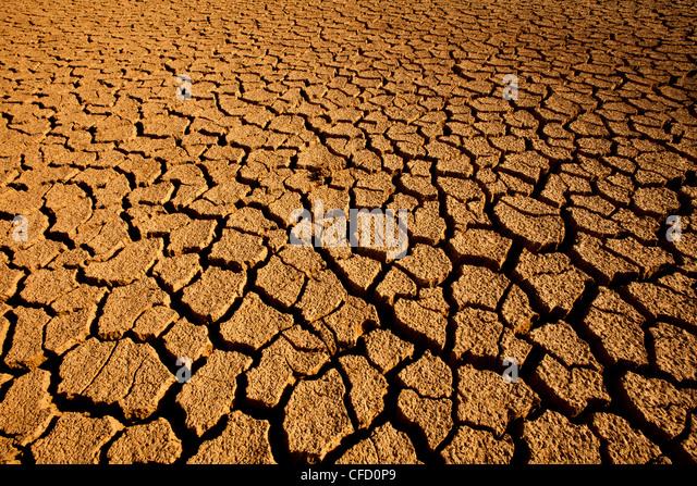 Landscape in Sarigua national park (desert) in Herrera province, Republic of Panama. - Stock-Bilder