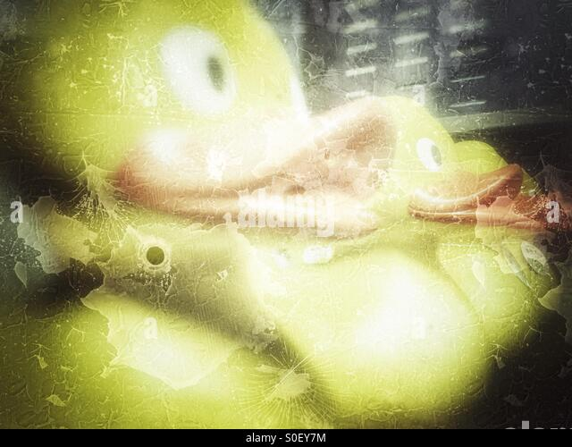 Get your ducks in a row... - Stock Image