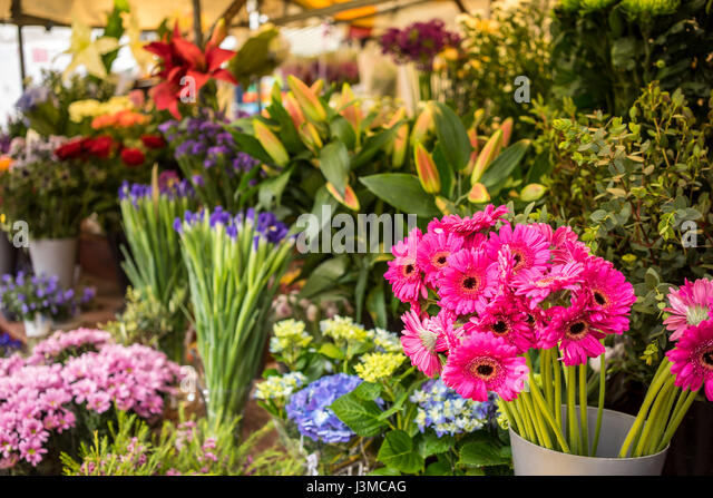 Flowers stall in the market in the University city of Cambridge in England - Stock-Bilder