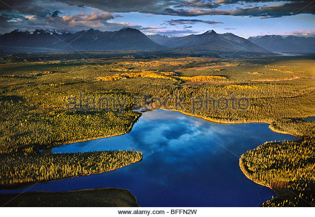 Lakes and muskegs (aerial), Chitina River Valley, Wrangell St. Elias National Park, Alaska - Stock Image