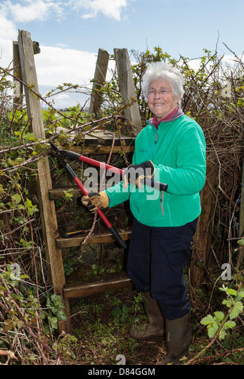 Ramblers footpath volunteer worker retiree clearing a country path and ladder stile blocked with overgrown vegetation. - Stock Image