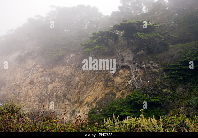 300 Years Old Stock Photos 300 Years Old Stock Images Alamy
