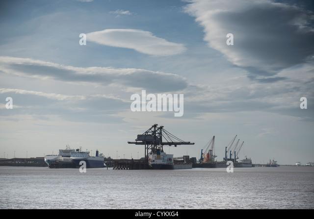 Cranes in industrial harbor - Stock Image