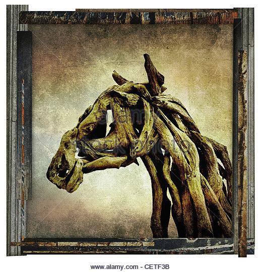 fine art horse - Stock Image