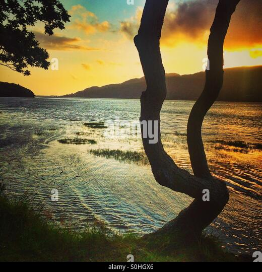 Sunset over the Mawddach Trail near Barmouth, Wales - Stock Image