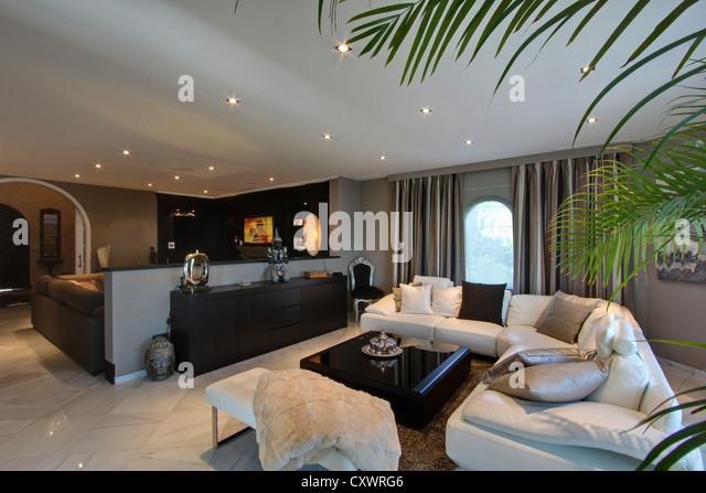 Leather couch in modern living room - Stock-Bilder