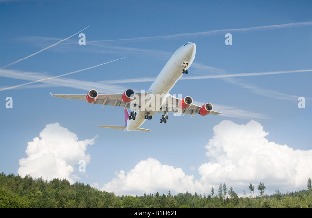 Airplane above a forest - Stock Image