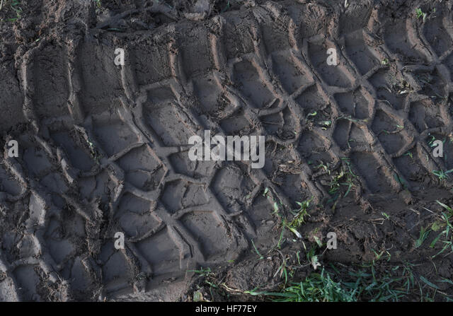 Tractor tyre impression / track in mud. - Stock Image