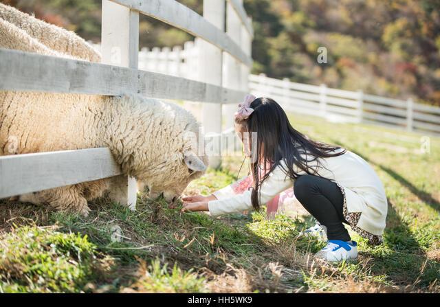 sheep ranch girls Hot girls: sheep ranch, ca bbq apron $2099: hot girls: sheep ranch, ca baseball jersey $2399: hot girls: sheep ranch, ca bib $1499.