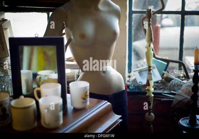mannequin in Antiquarian - Stock-Bilder