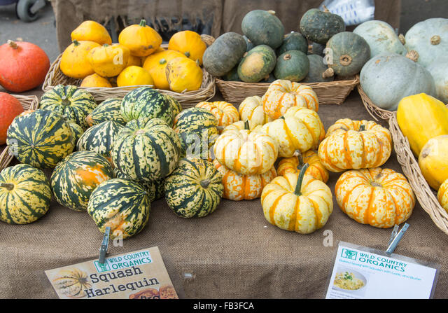 Squash for sale at an organic farmers market vegetable stall, London, England, UK - Stock Image