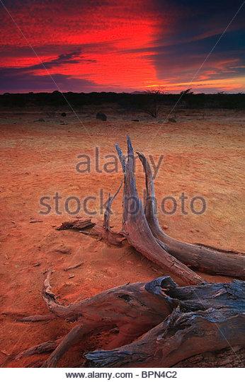Sundown in Sarigua national park (desert), Herrera province, Republic of Panama. - Stock Image