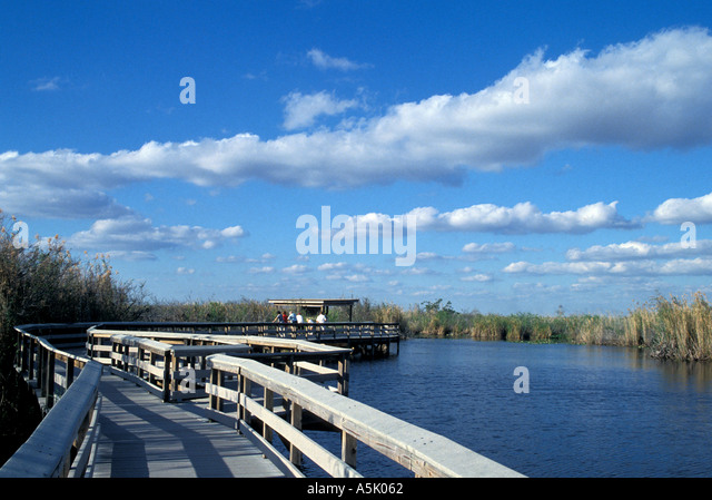 Florida Everglades National Park Anhinga Trail boardwalk - Stock Image