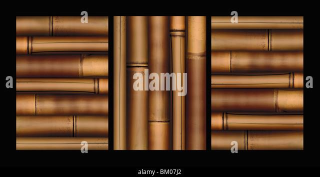Bamboo - Stock-Bilder