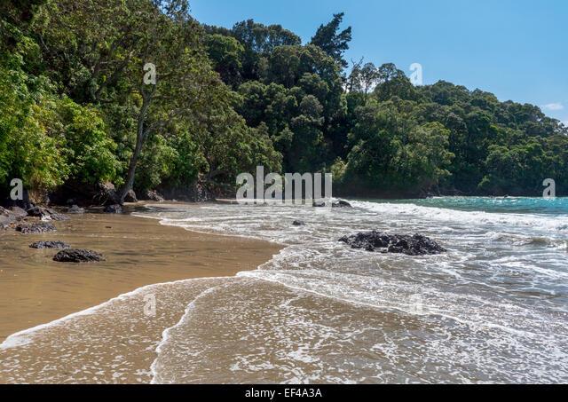 The beach at Orokawa Bay, Orkawa Scenic Reserve, near the town of Waihi Beach, Bay of Plenty, New Zealand - Stock Image